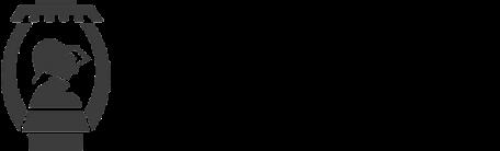 fire engineering company grey logo