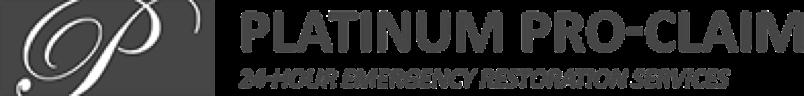 platinum company grey logo